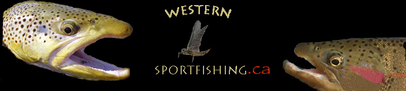 Welcome to Western Sportfishing!
